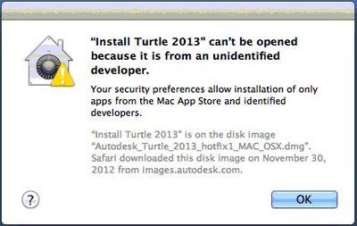 Turtle-2013-path
